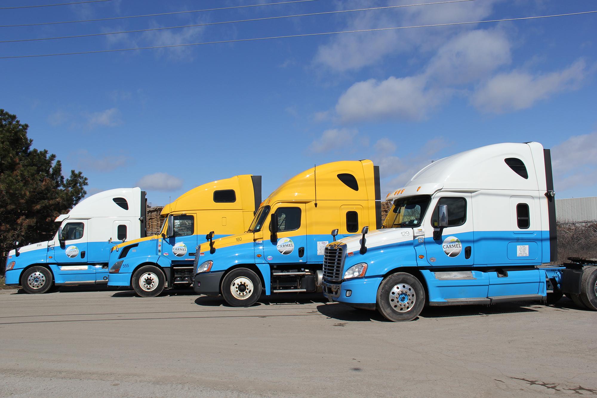 Carmel Transport International Ltd    Home – We have the
